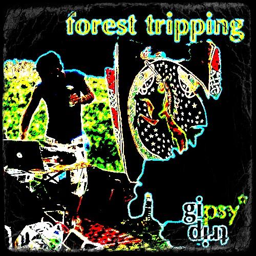 gipsytrip live set – Cafete @ Reithalle Bern – June 2016 / forest tripping