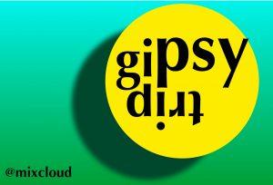 160616_gipsytrip_logo_forest sun